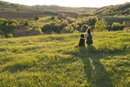 What strategies help vegans manage their trauma?
