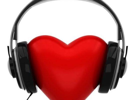Vegan Nation Radio :  Dealing with Non-Vegan Animal Health Practitioners