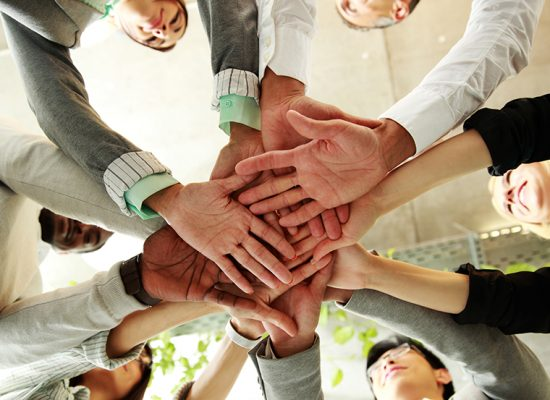 The Power of Group Intention in Creating a Vegan World