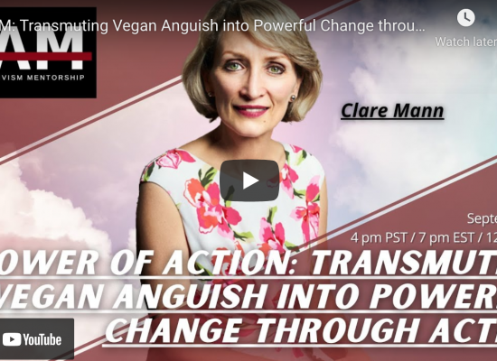 The Power of Action: From Vystopia to Positive Action for Change